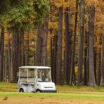 【魂のゴルフ】~ 成熟したゴルフは真の豊かさをもたらす 〜 第8回 限定復活?トホホ日記